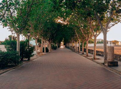 Paseo del Convento